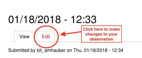 Edit Button